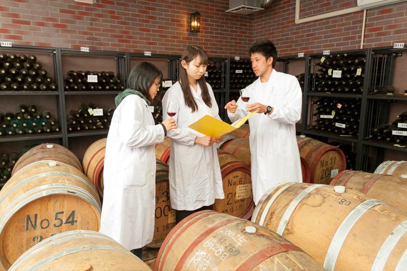 ワイン科学研究センター